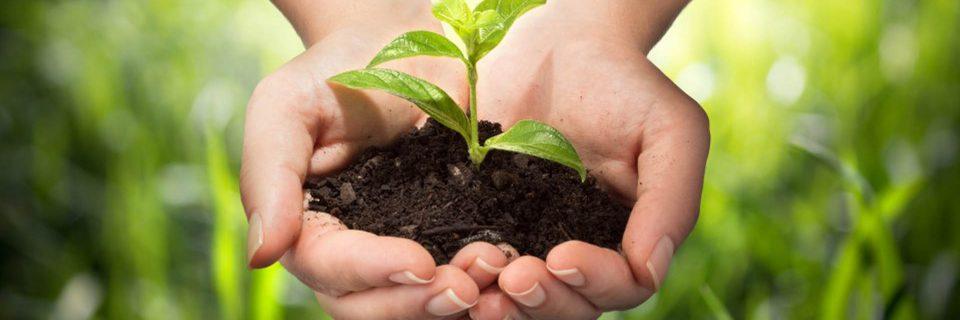 nous employons à la protection de l'environnement