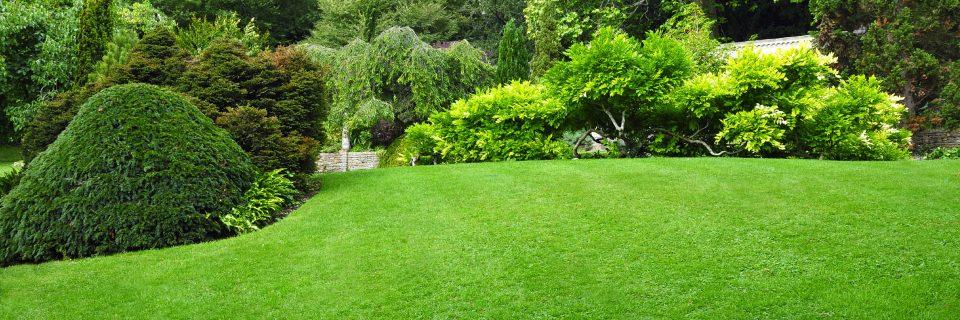Nous imaginons et réalisons avec vous votre jardin